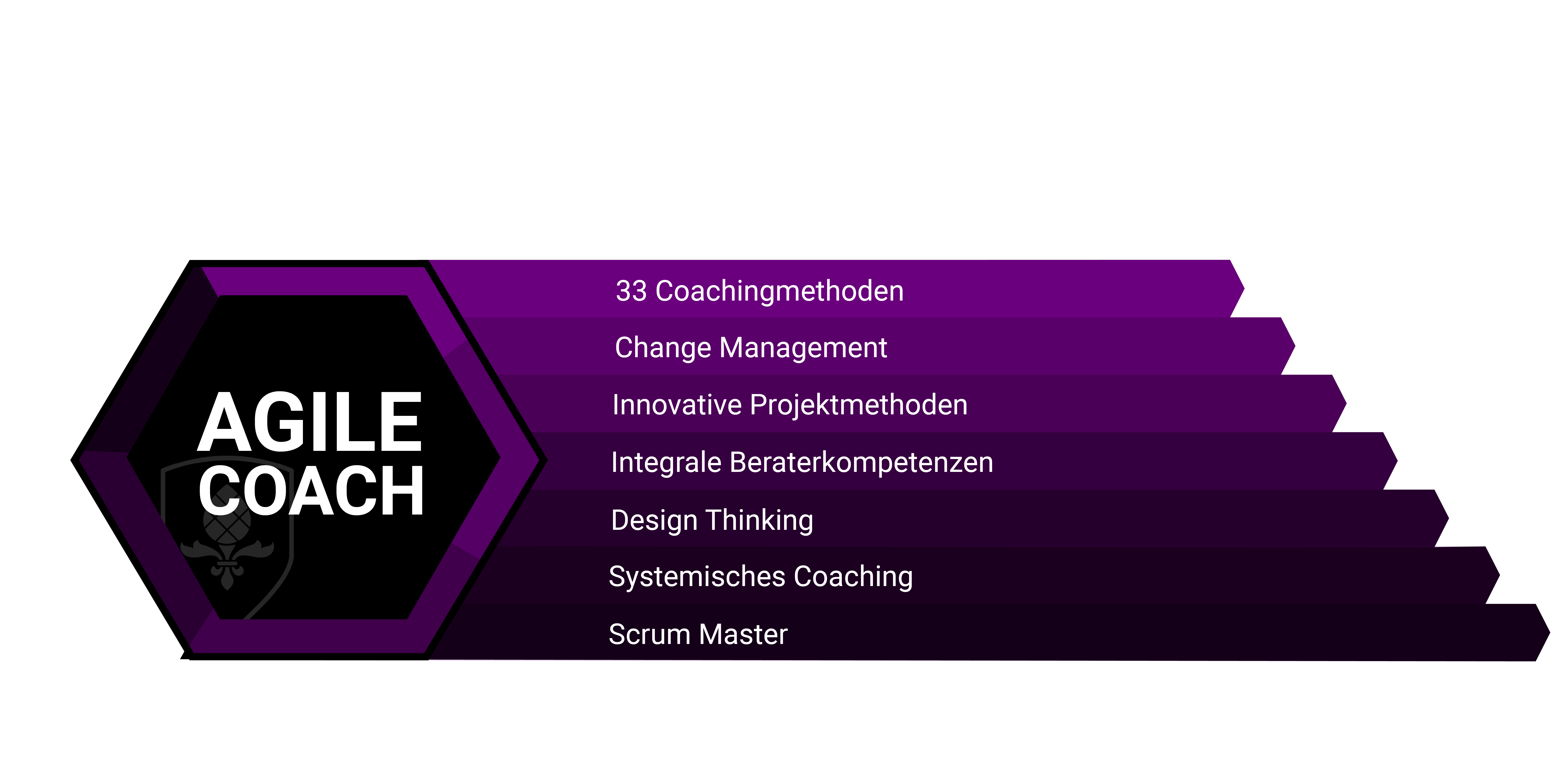 Agile Coach Zertifizierung Steinbeis
