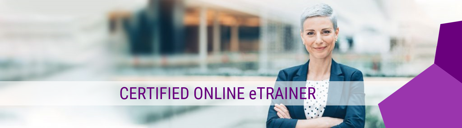 Online Trainer Ausbildung Steinbeis Weiterbildung