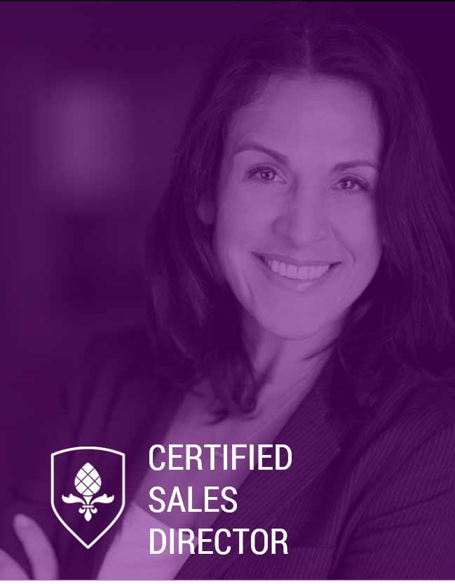 Online Weiterbildung Certified Sales Director Hannover