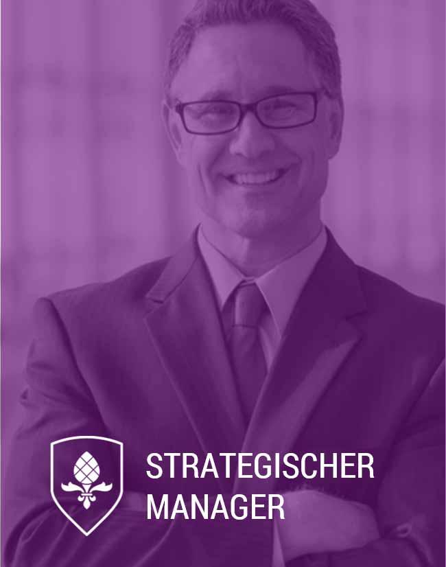 Online Weiterbildung Strategischer Manager Berlin Nürnberg