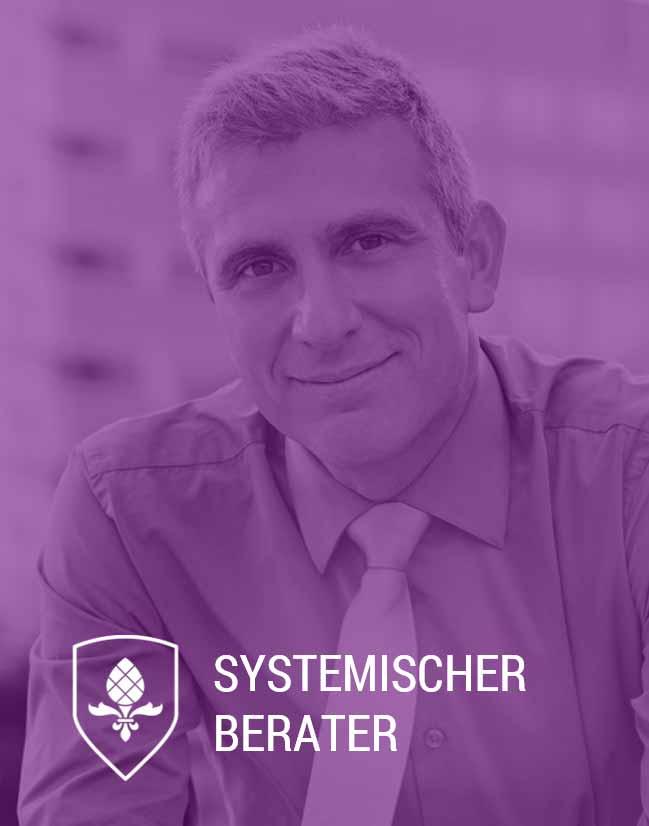 Online Weiterbildung Systemische Beratung Frankfurt Hamburg