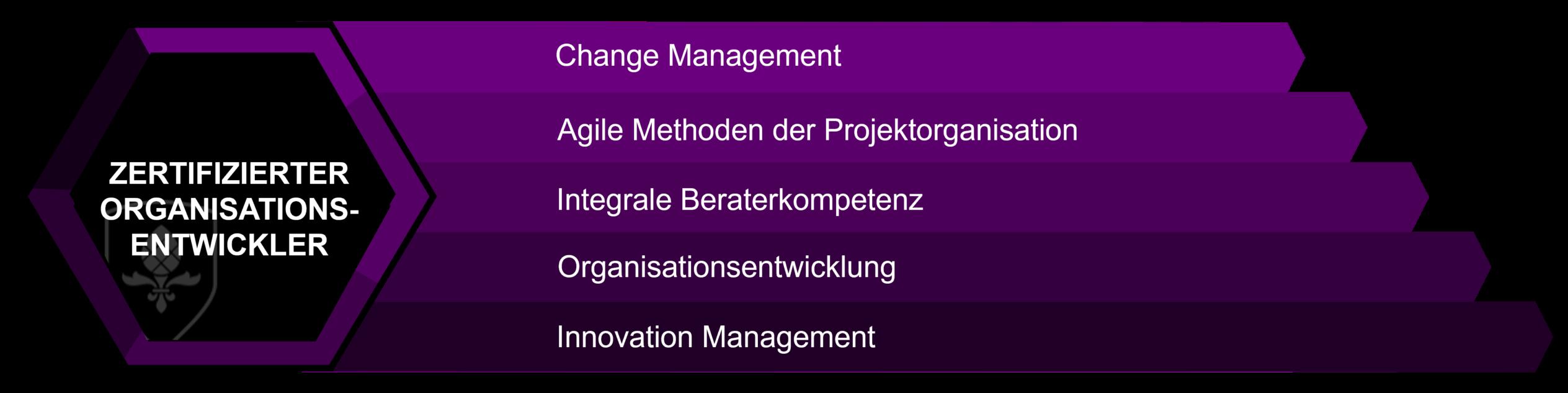 Organisationsentwickler