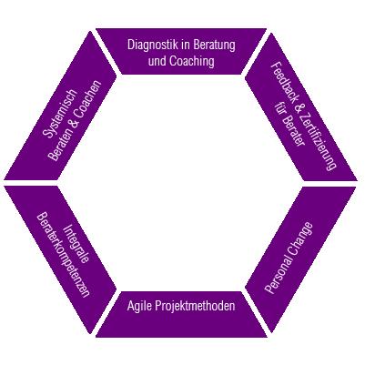 Systemischer_Berater