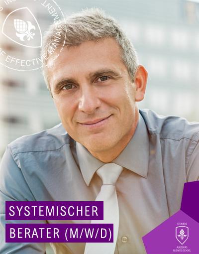 Systemischer Berater